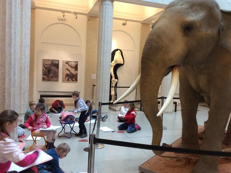 Pojďte kreslit slona!