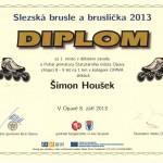 17Šimon Hloušek 2013