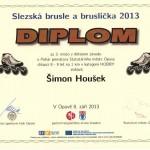 18 Šimon Hloušek 2013 (2)