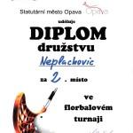 Diplom-