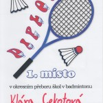 _Diplom Cekotová bad
