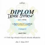 DiplomStefkova